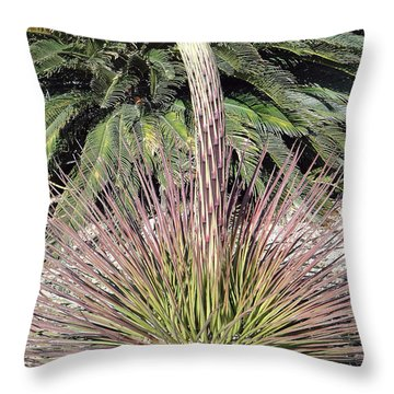 Phoenix Spire Throw Pillow