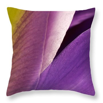Photograph Of A Dutch Iris Throw Pillow by Perla Copernik