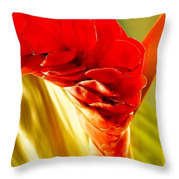 Photograph Of A Red Ginger Flower Throw Pillow by Perla Copernik