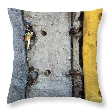Phx 10 Throw Pillow by Marlene Burns