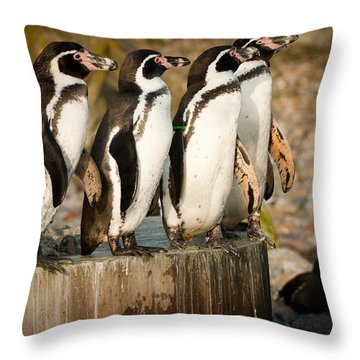Pick Up A Penguin Throw Pillow
