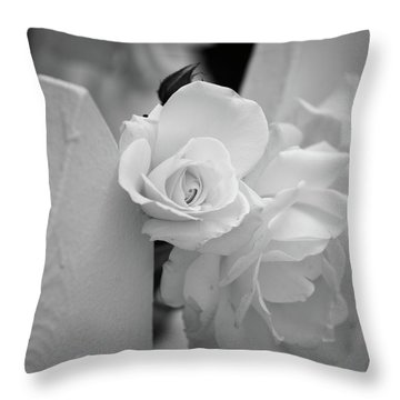 Picket Rose Throw Pillow