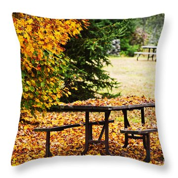 Picnic Table With Autumn Leaves Throw Pillow by Elena Elisseeva