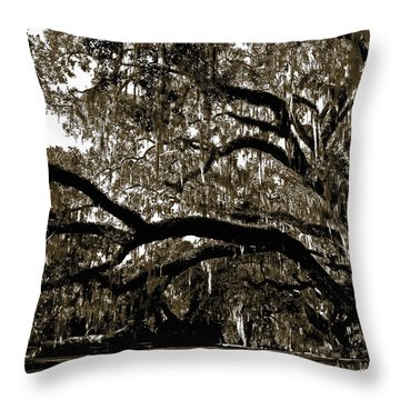 Throw Pillow featuring the photograph Picnic Under The Oak by DigiArt Diaries by Vicky B Fuller