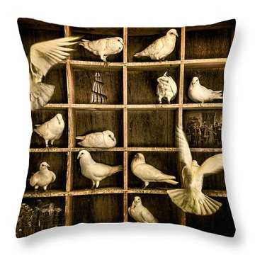 Pigeon Holed Throw Pillow by Chris Lord