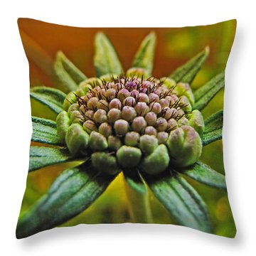 Throw Pillow featuring the photograph Pinchshin Bud by Debbie Portwood