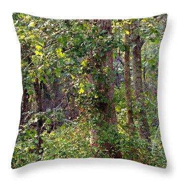 Pine Barrens Throw Pillow