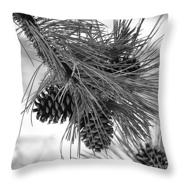 Pine Cones Throw Pillow by Dorrene BrownButterfield
