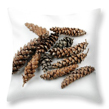 Pine Cones Throw Pillow by Photo Researchers, Inc.