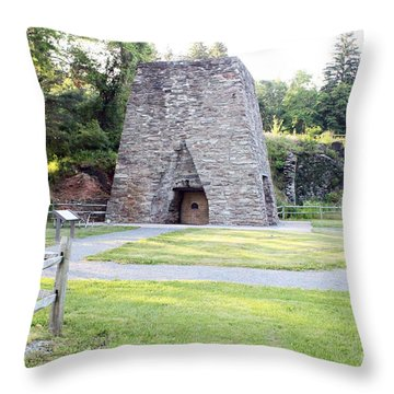 Throw Pillow featuring the photograph Pine Grove Furnace State Park by Tony Cooper