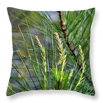Pine Needles Throw Pillow by Al Powell Photography USA