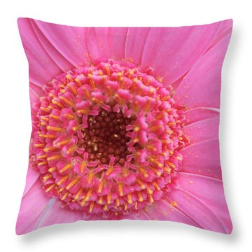 Pink A Boo Throw Pillow by Kathy Yates