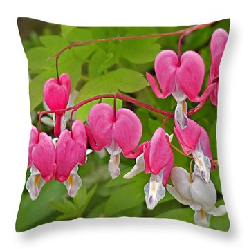 Pink And White Bleeding Heart Flowers  Throw Pillow