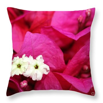Pink Bouganvillea Throw Pillow by Sabrina L Ryan