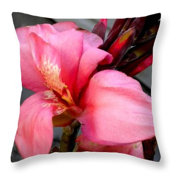 Pink Canna Throw Pillow by Renate Nadi Wesley