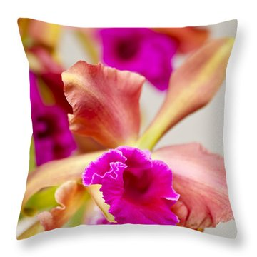 Pink Cattalaya Orchid Throw Pillow by Ron Dahlquist