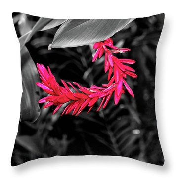 Throw Pillow featuring the photograph Pink Curve by Rachel Cohen