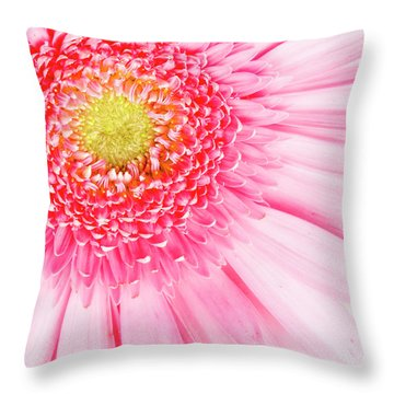 Pink Delight II Throw Pillow by Tamyra Ayles