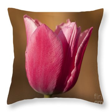 Pink Throw Pillow by Eunice Gibb