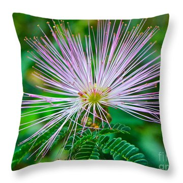 Throw Pillow featuring the photograph Pink Expression by Eve Spring