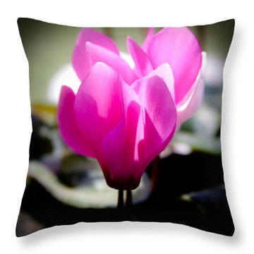 Pink Floral Throw Pillow by David Patterson
