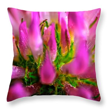 Pink Flower Throw Pillow by Andre Faubert