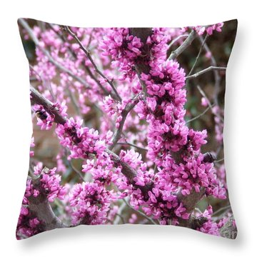 Pink Flower Throw Pillow by Andrea Anderegg