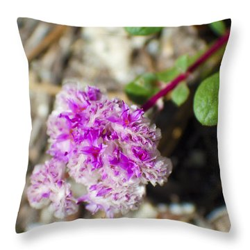 Pink Flower Close Up Throw Pillow by M Valeriano