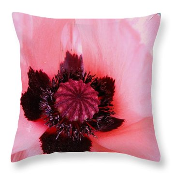 Throw Pillow featuring the photograph Pink Flower by Jasna Gopic