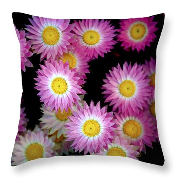 Pink Flowers At Dawn 3 Throw Pillow by Sumit Mehndiratta