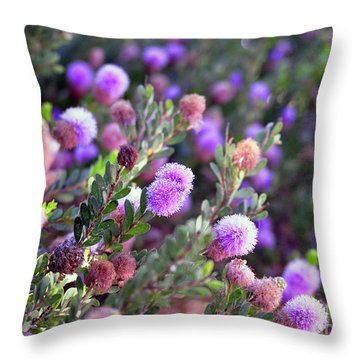 Throw Pillow featuring the photograph Pink Fuzzy Balls by Clayton Bruster