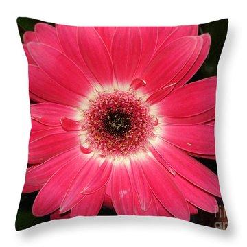 Throw Pillow featuring the photograph Pink Gerbera Daisy by Kerri Mortenson