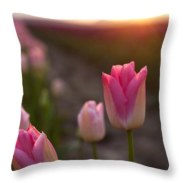 Pink Glory Throw Pillow by Mike Reid