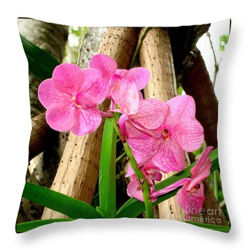 Throw Pillow featuring the photograph Pink Hawaiian Orchid by Tanya  Searcy