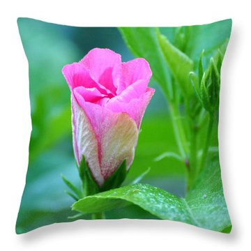 Pink Hybiscus Bud Throw Pillow by Jodi Terracina