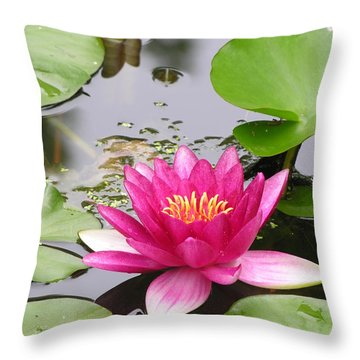 Pink Lily Flower  Throw Pillow
