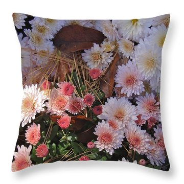 Throw Pillow featuring the photograph Pink Mum by Joseph Yarbrough