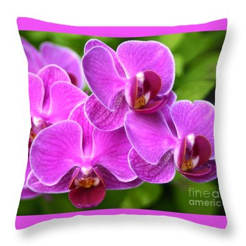 Throw Pillow featuring the photograph Pink Orchids B by Cindy Lee Longhini
