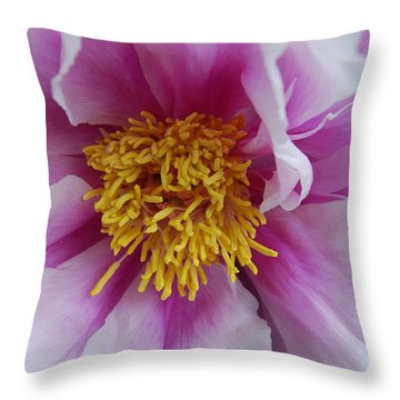 Throw Pillow featuring the photograph Pink Peony by Eva Kaufman