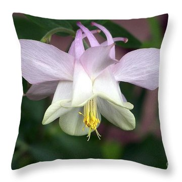 Pink Perfection Throw Pillow by Dorrene BrownButterfield