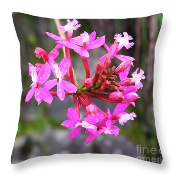 Throw Pillow featuring the photograph Inca Trail Orchid by Michele Penner