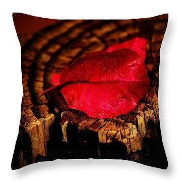 Throw Pillow featuring the photograph Pink Petal by Jessica Shelton