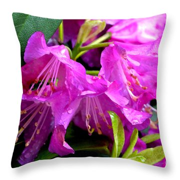 Pink Reflections Throw Pillow by Pravine Chester