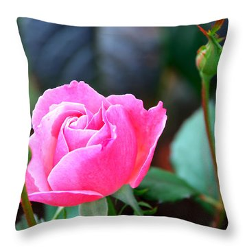 Throw Pillow featuring the photograph Pink Rose by Janice Adomeit