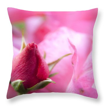Pink Rose Throw Pillow by Jeannette Hunt