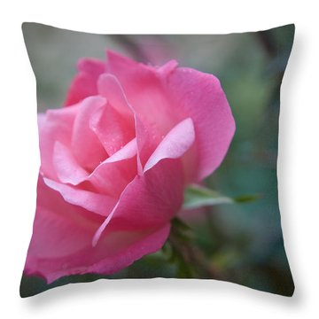 Pink Rose Throw Pillow by Kelly Rader