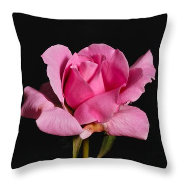 Throw Pillow featuring the photograph Pink Tea Rose by Gary Dean Mercer Clark