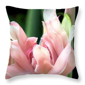 Pink Torch Ginger Throw Pillow by Jocelyn Kahawai