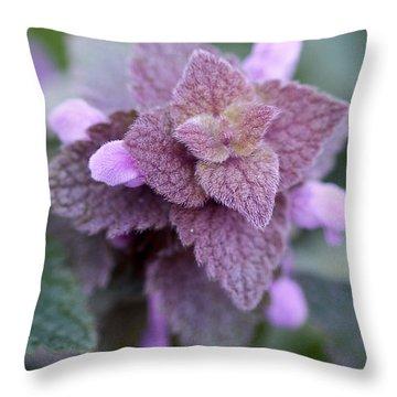 Pink Velvet Throw Pillow by Lisa Phillips