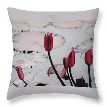 Pink Water Lily Buds Throw Pillow